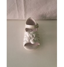 Guaracha blanca 3562 Roly Poly